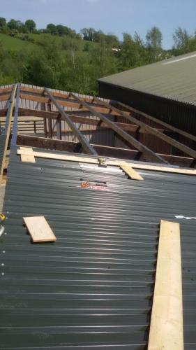 roof-services