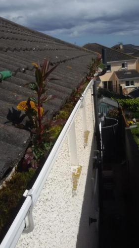 roofing-services-dublin